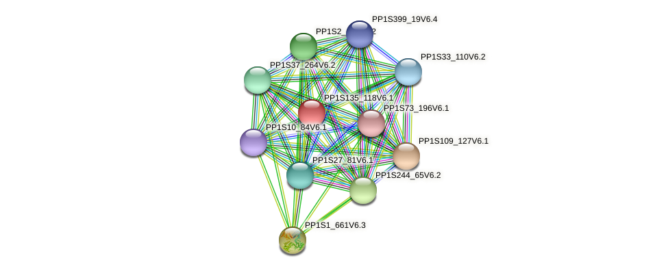 PP1S135_118V6.1 protein (Physcomitrella patens) - STRING interaction network
