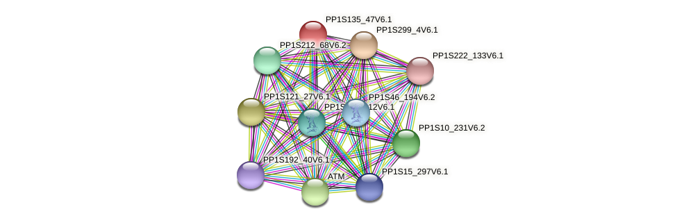 PP1S135_47V6.1 protein (Physcomitrella patens) - STRING interaction network