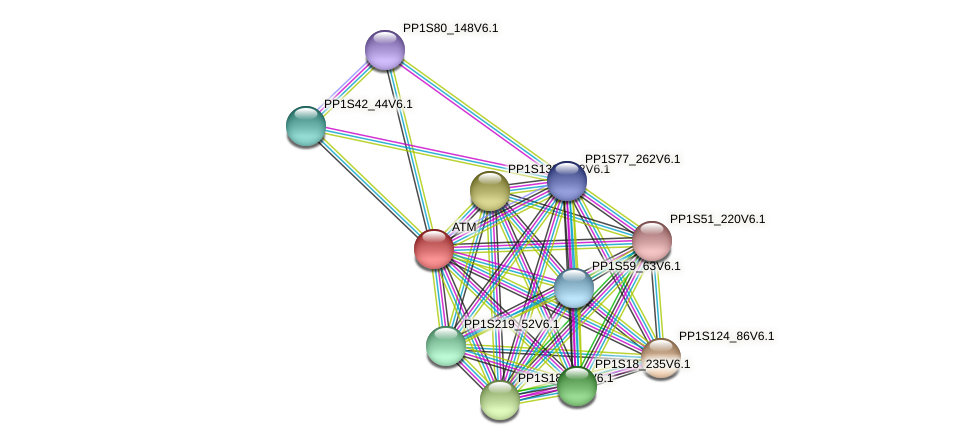PP1S135_65V6.1 protein (Physcomitrella patens) - STRING interaction network