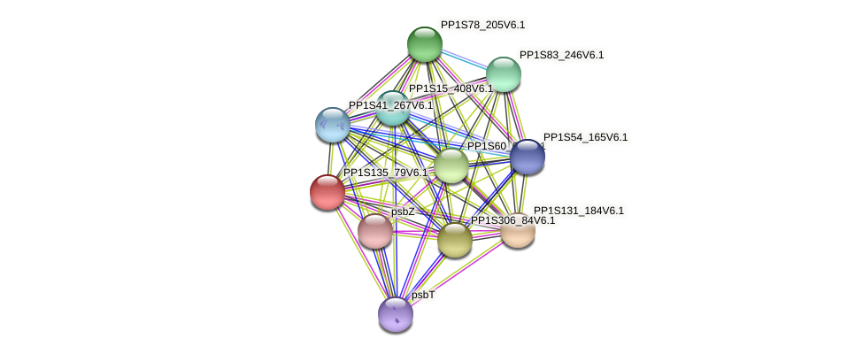 PP1S135_79V6.1 protein (Physcomitrella patens) - STRING interaction network
