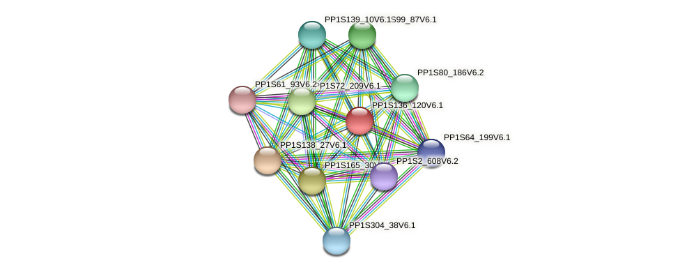 PP1S136_120V6.1 protein (Physcomitrella patens) - STRING interaction network