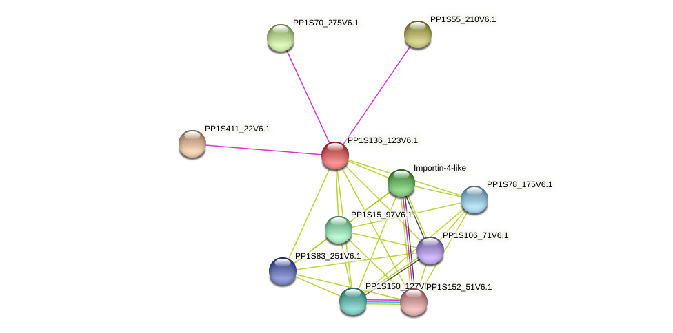 PP1S136_123V6.1 protein (Physcomitrella patens) - STRING interaction network
