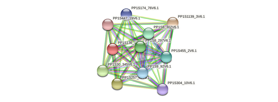 PP1S136_125V6.1 protein (Physcomitrella patens) - STRING interaction network