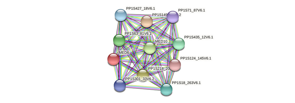 PP1S136_129V6.1 protein (Physcomitrella patens) - STRING interaction network