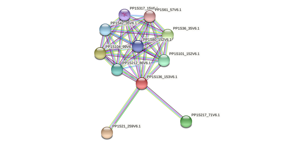 PP1S136_153V6.1 protein (Physcomitrella patens) - STRING interaction network