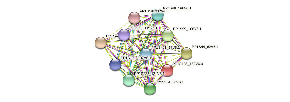 PP1S136_162V6.1 protein (Physcomitrella patens) - STRING interaction network