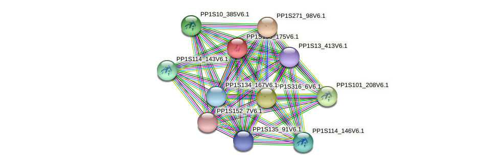 PP1S136_175V6.1 protein (Physcomitrella patens) - STRING interaction network
