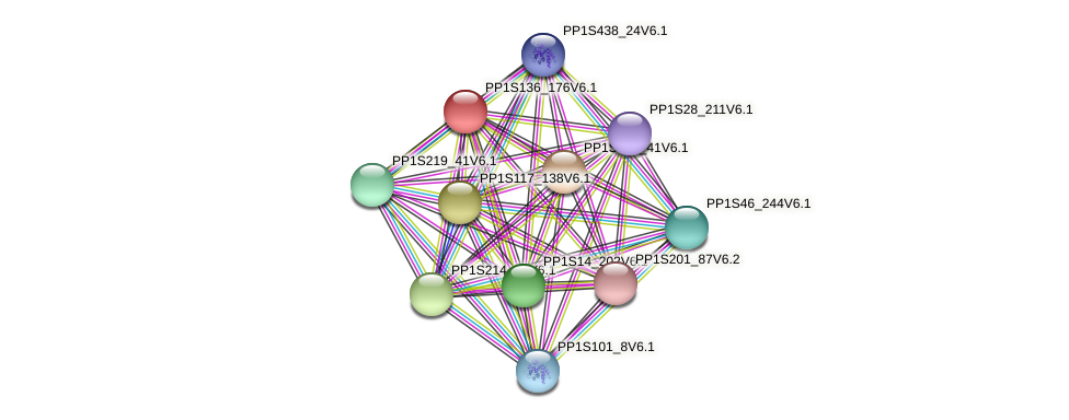 PP1S136_176V6.1 protein (Physcomitrella patens) - STRING interaction network