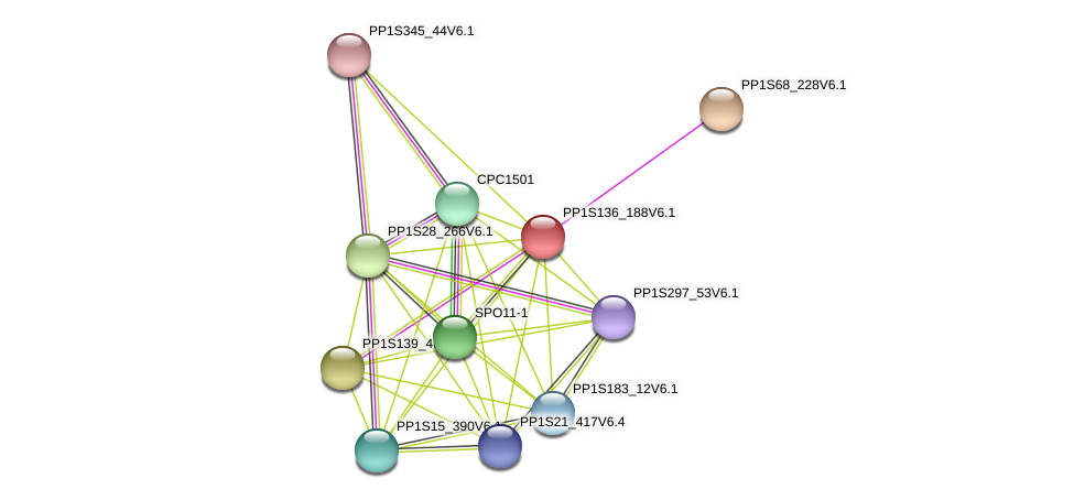 PP1S136_188V6.1 protein (Physcomitrella patens) - STRING interaction network
