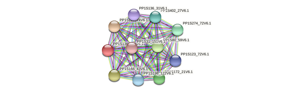 PP1S136_190V6.1 protein (Physcomitrella patens) - STRING interaction network