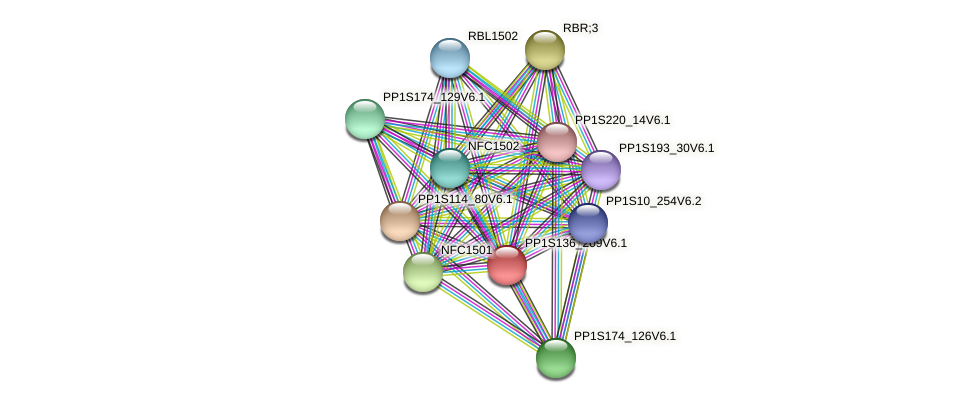 PP1S136_209V6.1 protein (Physcomitrella patens) - STRING interaction network