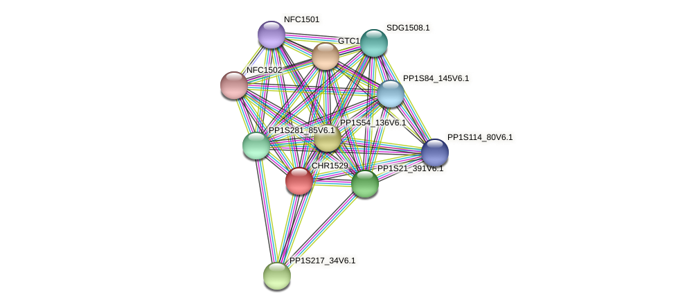 CHR1529 protein (Physcomitrella patens) - STRING interaction network