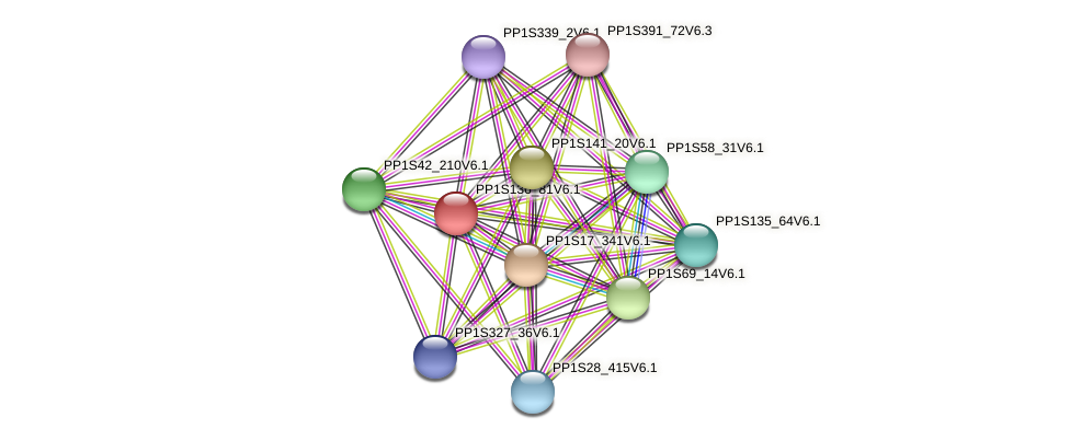 PP1S136_81V6.1 protein (Physcomitrella patens) - STRING interaction network