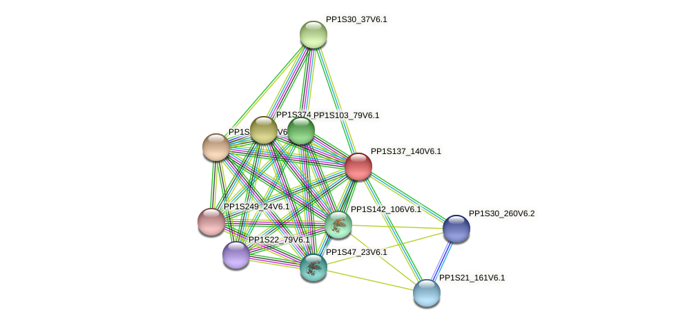 PP1S137_140V6.1 protein (Physcomitrella patens) - STRING interaction network