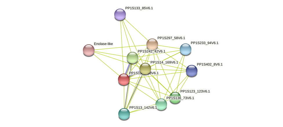PP1S137_263V6.1 protein (Physcomitrella patens) - STRING interaction network