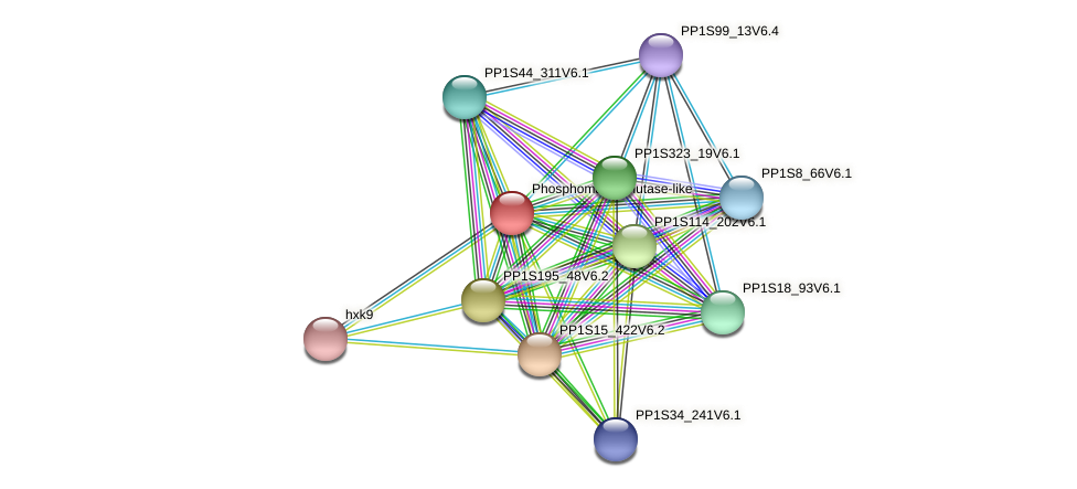PP1S137_89V6.1 protein (Physcomitrella patens) - STRING interaction network