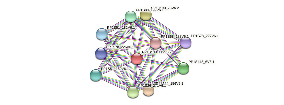 PP1S138_112V6.1 protein (Physcomitrella patens) - STRING interaction network