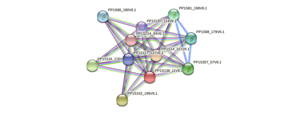 PP1S138_11V6.1 protein (Physcomitrella patens) - STRING interaction network