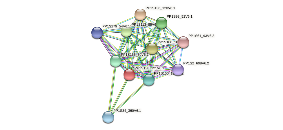 PP1S138_121V6.1 protein (Physcomitrella patens) - STRING interaction network
