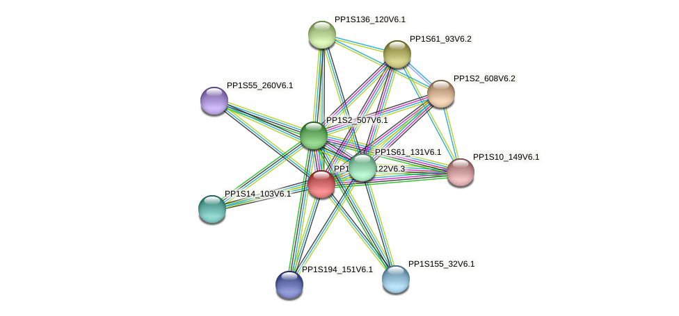 PP1S138_122V6.1 protein (Physcomitrella patens) - STRING interaction network