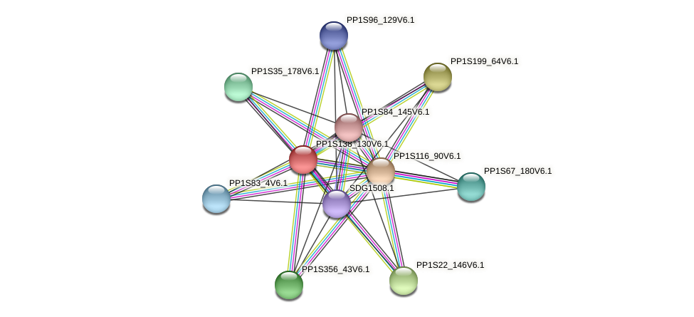 PP1S138_130V6.1 protein (Physcomitrella patens) - STRING interaction network