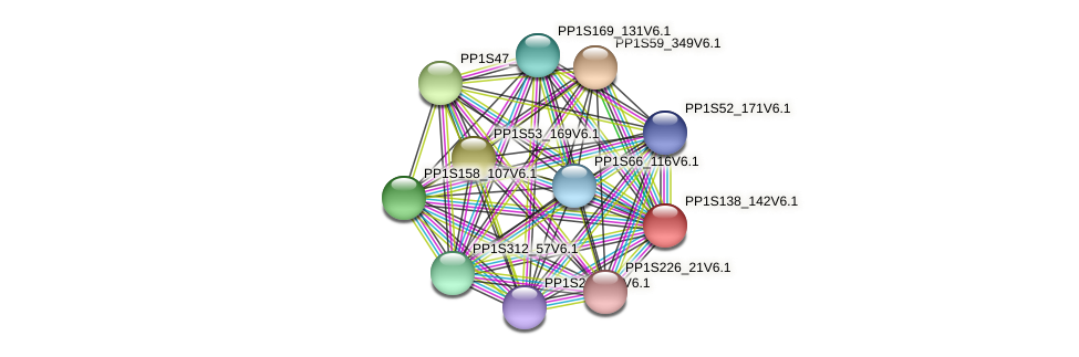 PP1S138_142V6.1 protein (Physcomitrella patens) - STRING interaction network