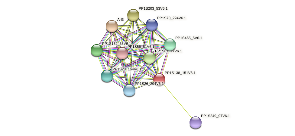 PP1S138_151V6.1 protein (Physcomitrella patens) - STRING interaction network