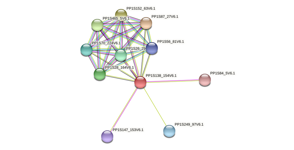 PP1S138_154V6.1 protein (Physcomitrella patens) - STRING interaction network