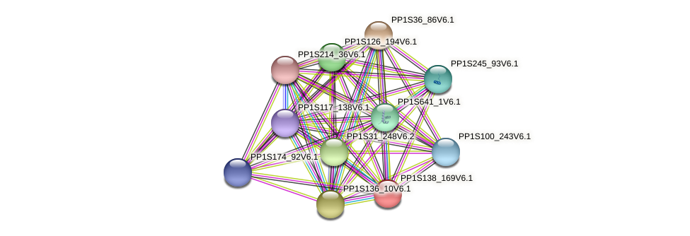 PP1S138_169V6.1 protein (Physcomitrella patens) - STRING interaction network