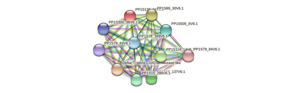 PP1S138_16V6.1 protein (Physcomitrella patens) - STRING interaction network