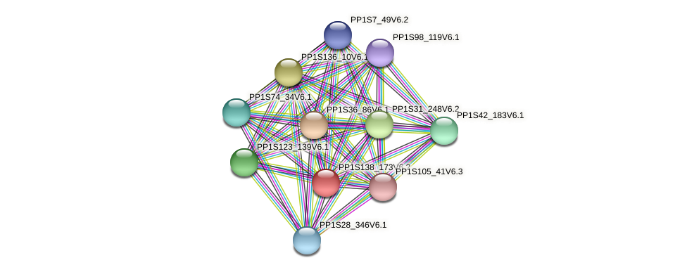 PP1S138_173V6.2 protein (Physcomitrella patens) - STRING interaction network