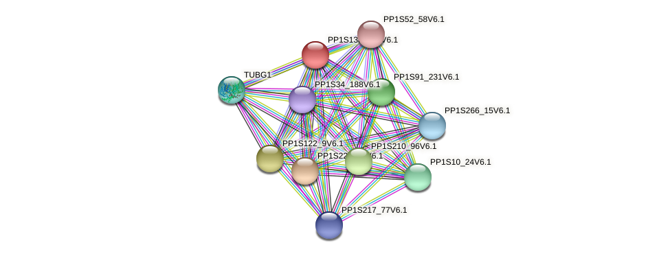 PP1S138_179V6.1 protein (Physcomitrella patens) - STRING interaction network