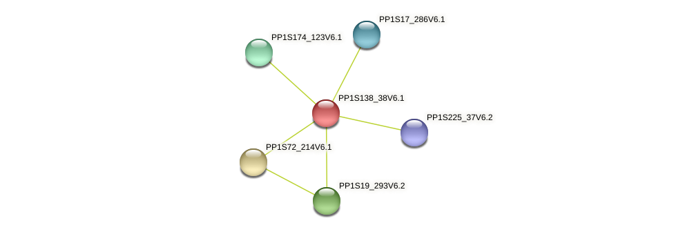 PP1S138_38V6.1 protein (Physcomitrella patens) - STRING interaction network