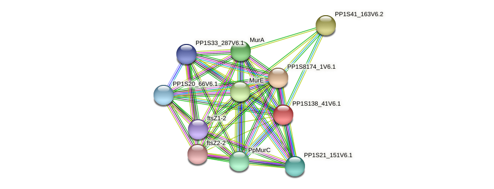 PBP protein (Physcomitrella patens) - STRING interaction network