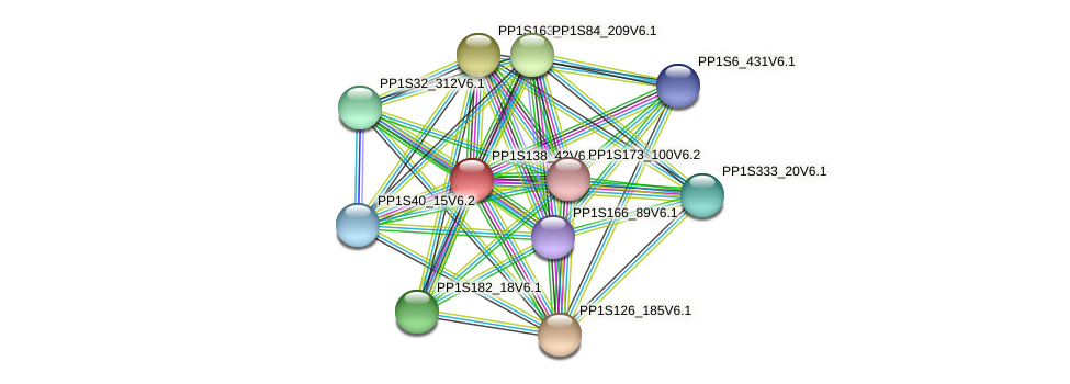 PP1S138_42V6.1 protein (Physcomitrella patens) - STRING interaction network
