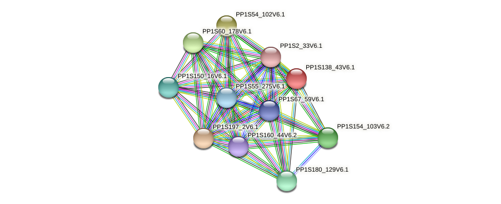 PP1S138_43V6.1 protein (Physcomitrella patens) - STRING interaction network