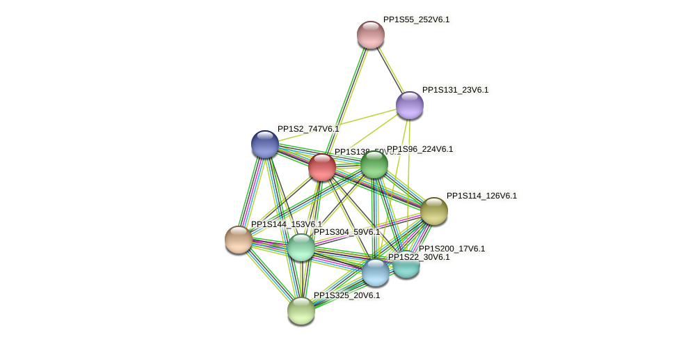 PP1S138_50V6.1 protein (Physcomitrella patens) - STRING interaction network
