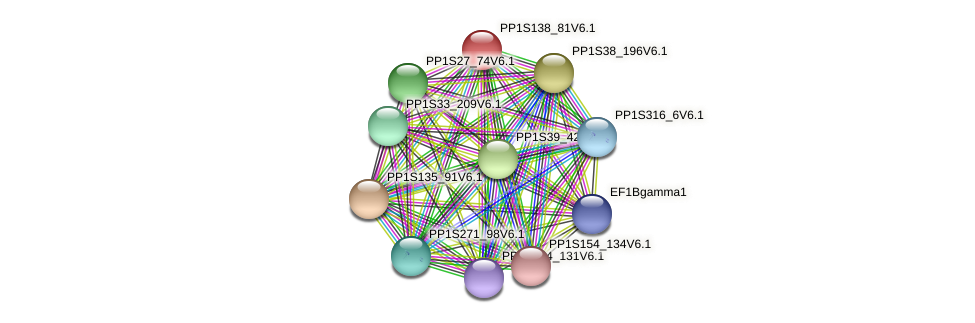 PP1S138_81V6.1 protein (Physcomitrella patens) - STRING interaction network