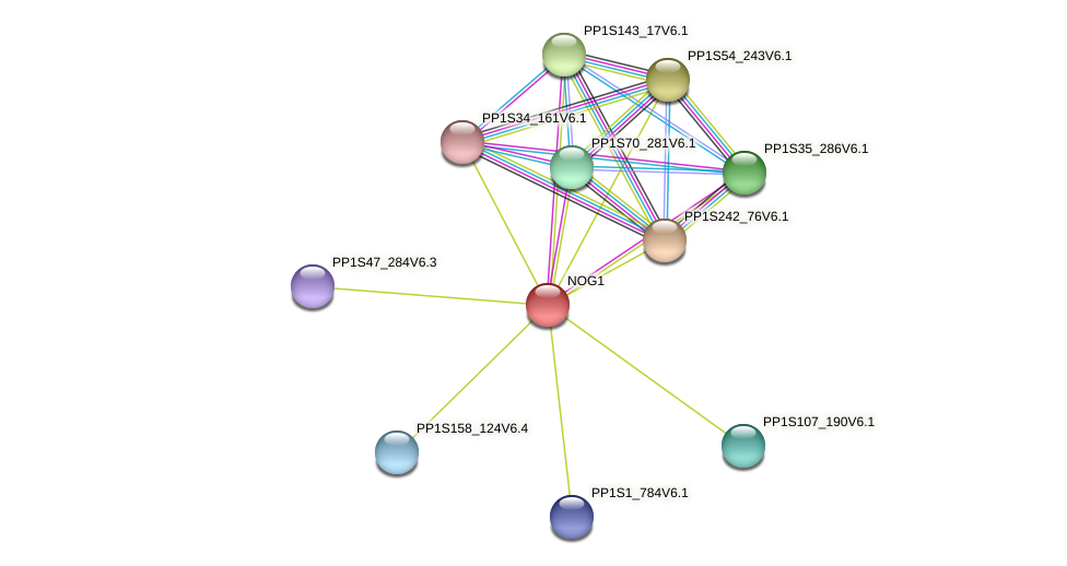 PP1S139_123V6.1 protein (Physcomitrella patens) - STRING interaction network
