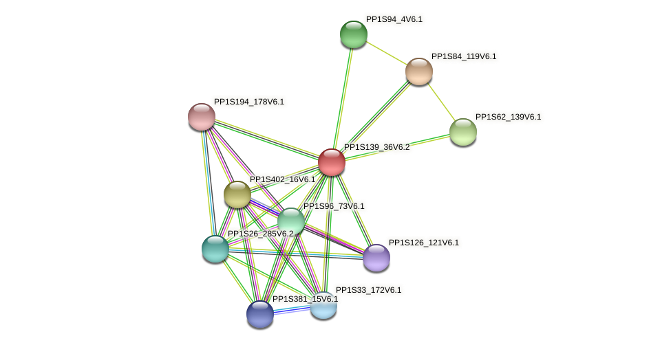 PP1S139_36V6.2 protein (Physcomitrella patens) - STRING interaction network