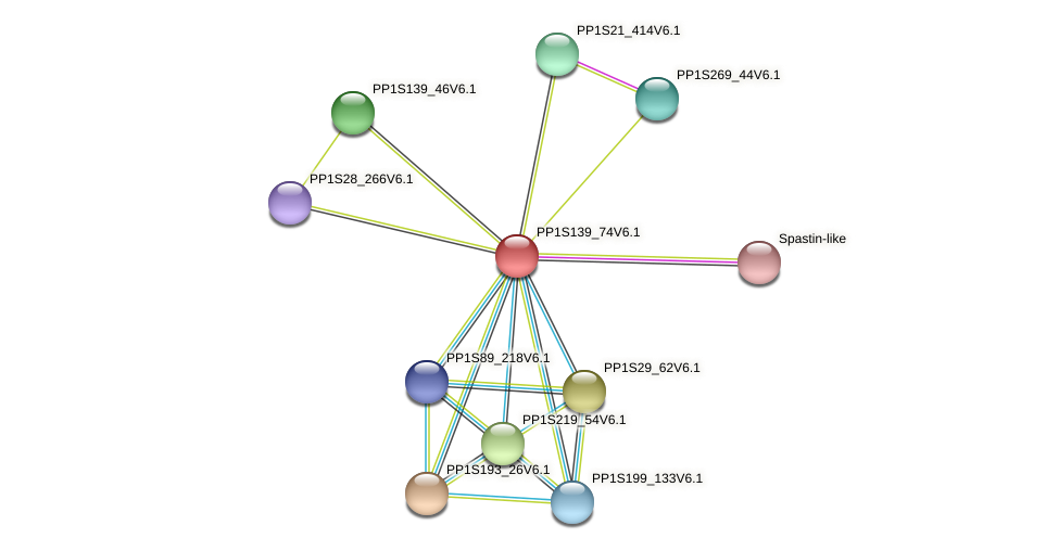 PP1S139_74V6.1 protein (Physcomitrella patens) - STRING interaction network