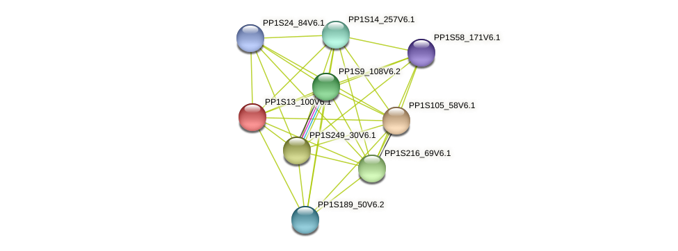 PP1S13_100V6.1 protein (Physcomitrella patens) - STRING interaction network