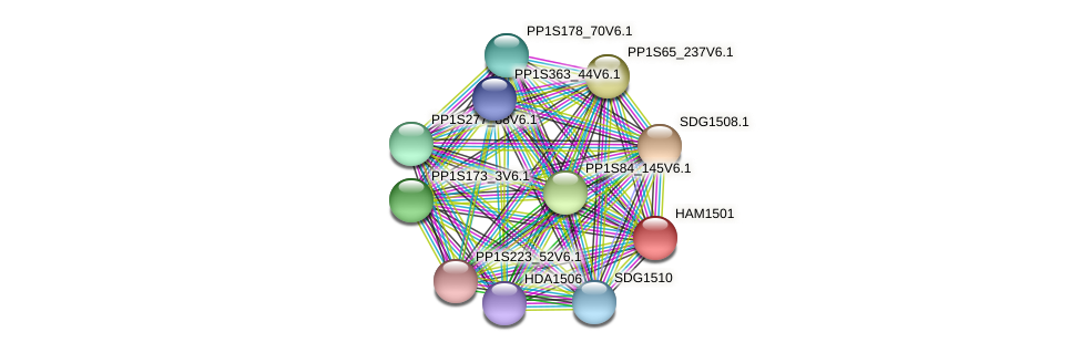 HAM1501 protein (Physcomitrella patens) - STRING interaction network