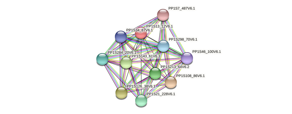 PP1S13_12V6.1 protein (Physcomitrella patens) - STRING interaction network