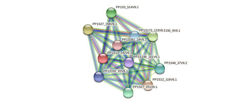 PP1S13_142V6.1 protein (Physcomitrella patens) - STRING interaction network
