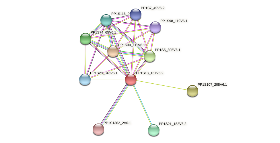 PP1S13_167V6.2 protein (Physcomitrella patens) - STRING interaction network