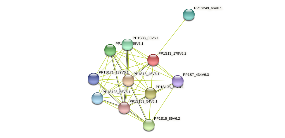 PP1S13_179V6.2 protein (Physcomitrella patens) - STRING interaction network