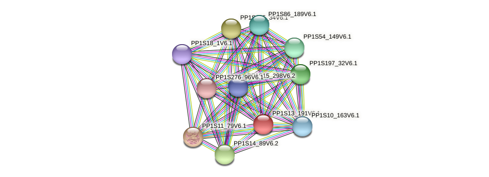 PP1S13_191V6.1 protein (Physcomitrella patens) - STRING interaction network