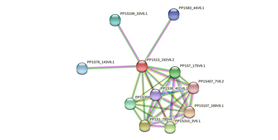 PP1S13_192V6.2 protein (Physcomitrella patens) - STRING interaction network