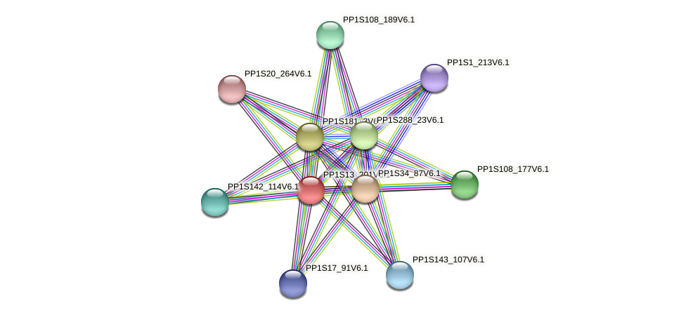 PP1S13_201V6.1 protein (Physcomitrella patens) - STRING interaction network